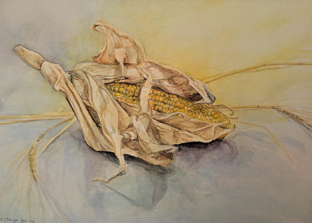 Elsbeth Tanja-Oogst-aquarel